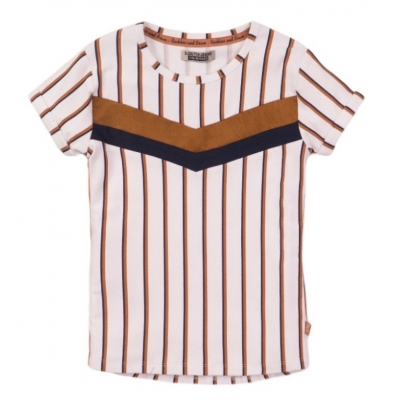 DJ Dutchjeans t-shirt white stripe